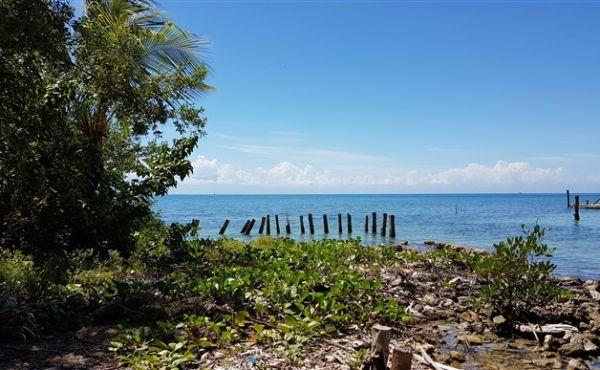 0.144 acres in Utila Town - view to sea