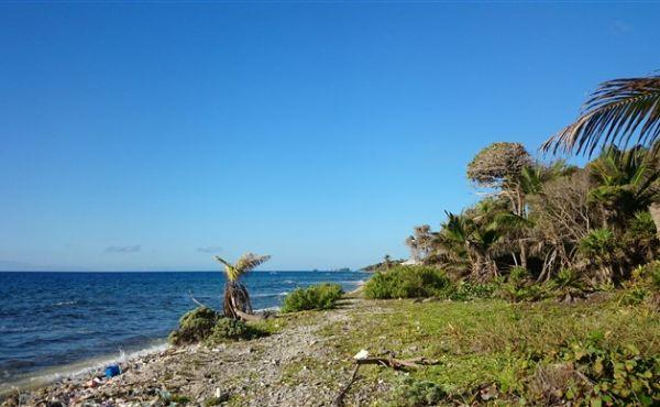0.33 Acres at Little Bight - View to sea