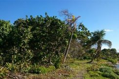 0.33 Acres at Little Bight - inland