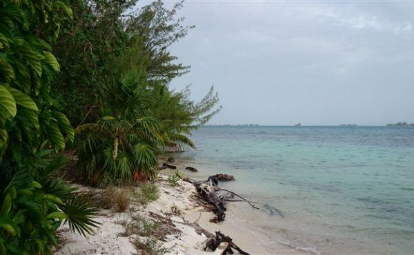 0.39 Acres at Pine Point - view to sea