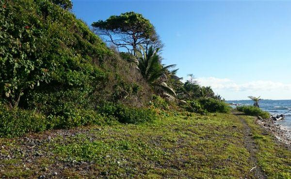 0.42 acres at Little Bight - view to east