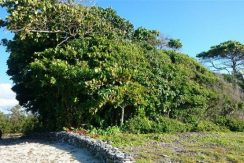 0.42 acres at Little Bight - view inland