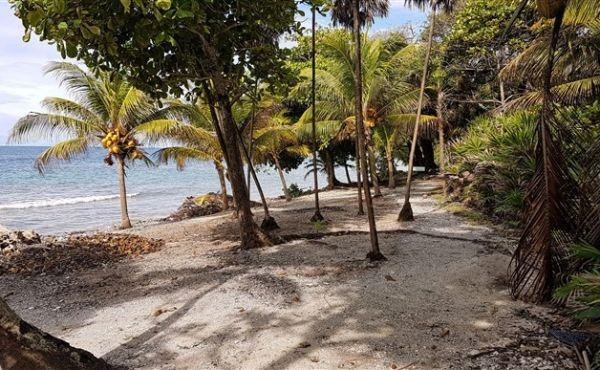 0.45 Acre at Little Bight - Featured Photo