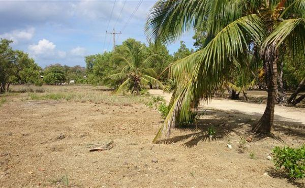 0.45 Acre at Little Bight - view along road