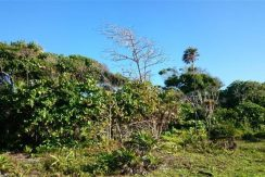 0.45 Acres at Little Bight - view to inland