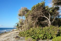 0.62 acres at Little Bight (Lot #14)- View to sea