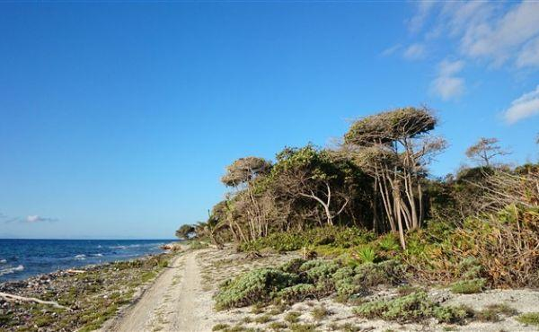 0.634 acres at Little Bight (Lot #13) - view to sea