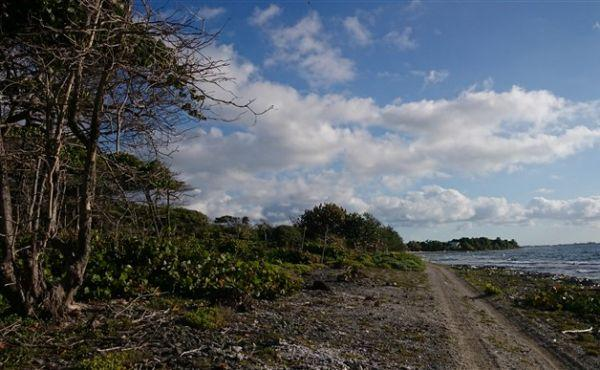 0.648 acres at Little Bight (Lot #15) - view to sea