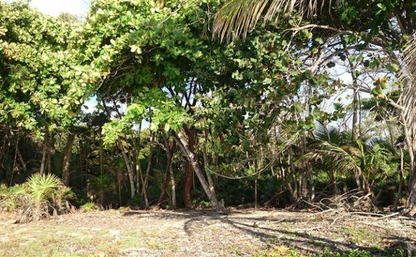 0.648 acres at Little Bight (Lot #15) - view inland