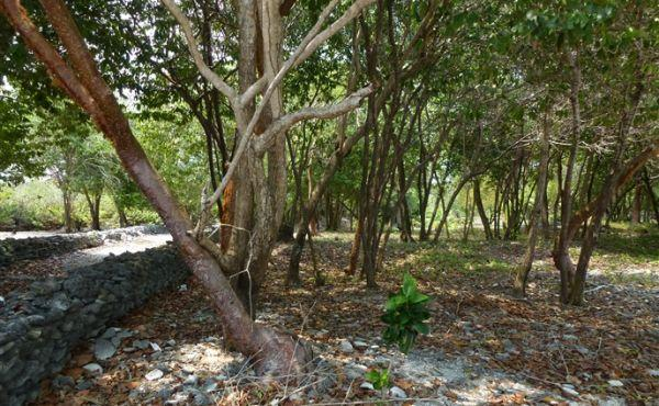 0.26 Acres at Mariners Landing Lot A1 - inland