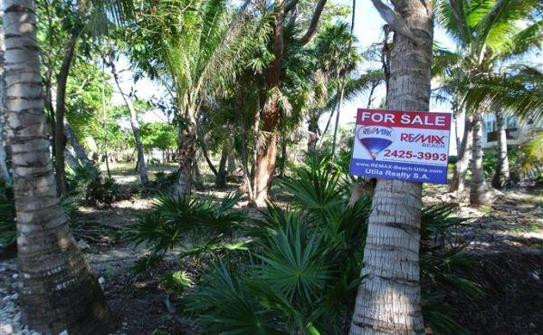 0.351 Acre Beachfront at Trade Wind - View inland