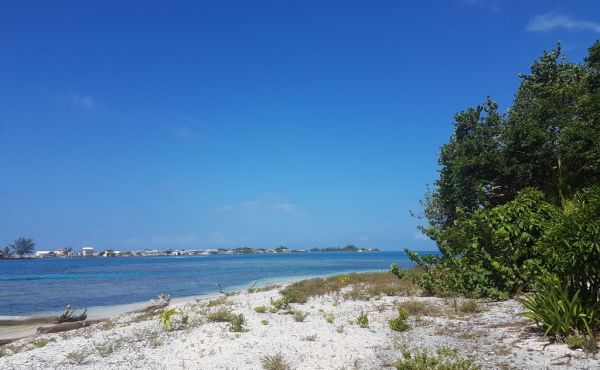 0.419 Acres at Treasure Beach - View to ocean