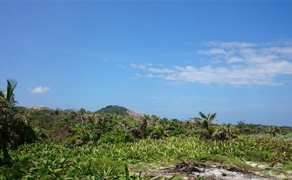 0.27 Acres at Airport Beach - view to Pumpkin Hill