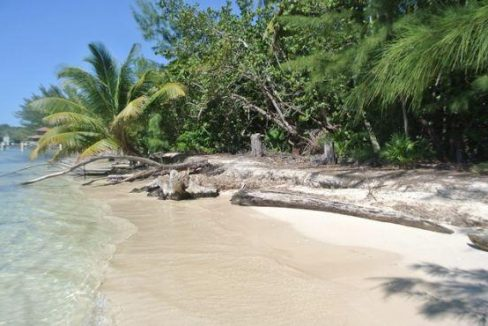 0.25 Acre Beachfront Lot at Pine Point