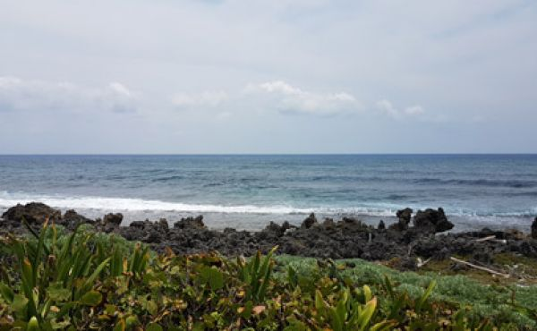 0.34 Acre Oceanview Lot at Pumpkin Hill - view to ocean