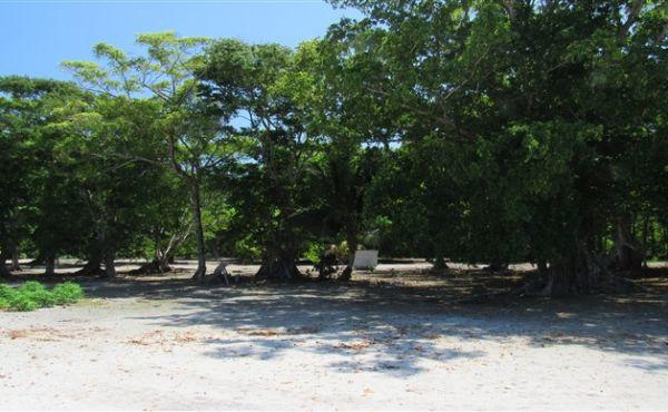 0.4 acre Beachfront at The Well - view inland
