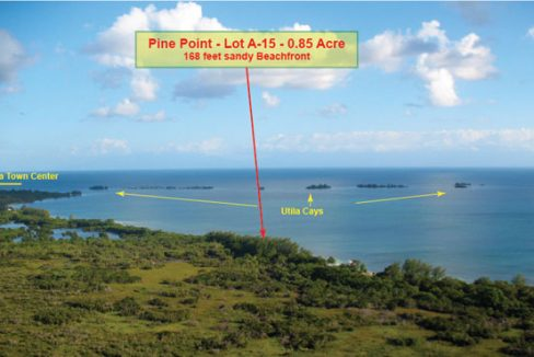 Pine Point Lot A-15 - Aerial