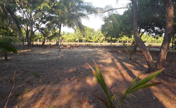 Lot #6 at Coconut Cove with Boat Slip (5)