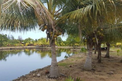0.15 Acres at Coconut Cove (1)