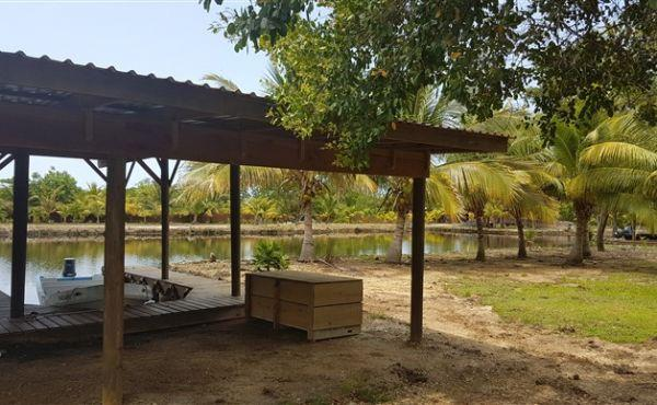 0.15 Acres at Coconut Cove (2)