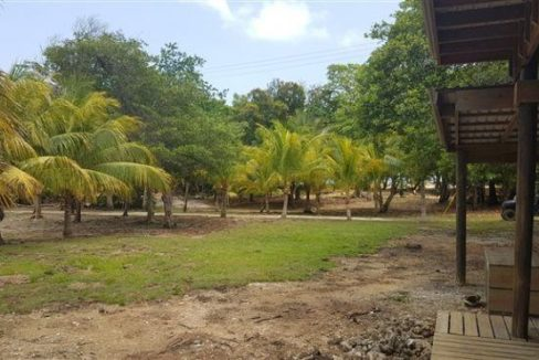 0.15 Acres at Coconut Cove (3)