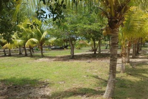 0.15 Acres at Coconut Cove (5)