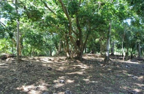 0.18 acres at Lumes (1)