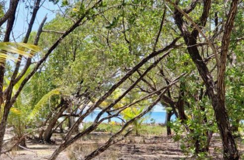 0.24 Acre Ocean View Lot at Jonathan Point (1)