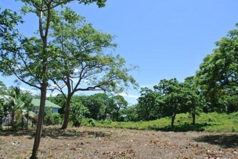 0.24 Acres on Pumpkin Hill Road (2)