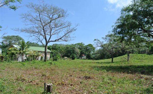 0.24 Acres on Pumpkin Hill Road (3)