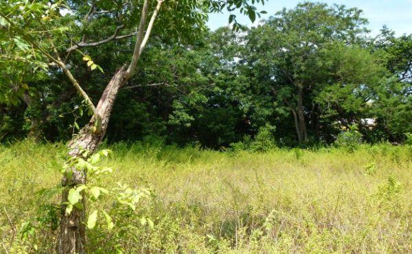 0.28 Acre Residential Lot at Bambu (2)