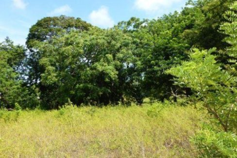 0.28 Acre Residential Lot at Bambu (3)