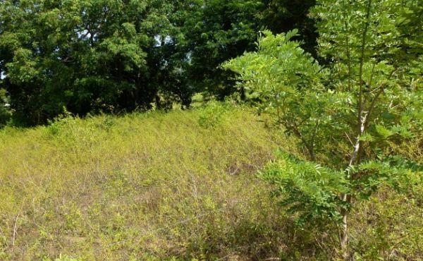 0.28 Acre Residential Lot at Bambu (4)