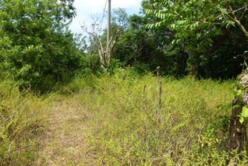 0.28 Acre Residential Lot at Bambu (5)