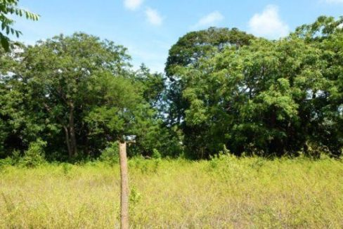 0.28 Acre Residential Lot at Bambu (6)
