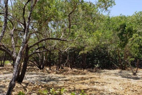 0.298 Acre Lot at Coral Beach Village (8)