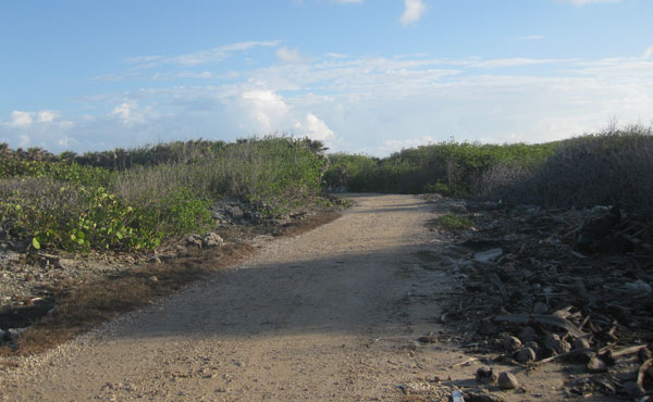 Lot #4 at Big Bight - roadway