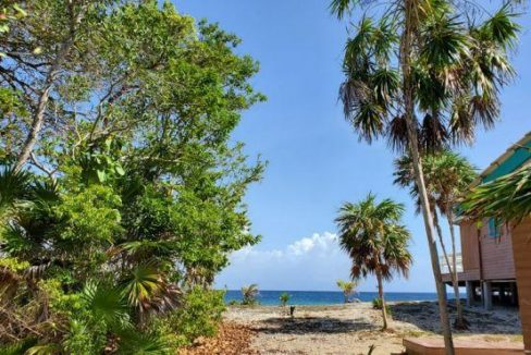 0.21 Acre Beach Access Lot at Coral Beach Village (1)
