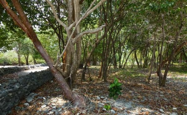 0.279 Acre at Mariners Landing Lot A2 (7)
