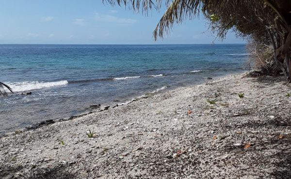 0.38 Acre Beachfront Lot at Silver Gardens