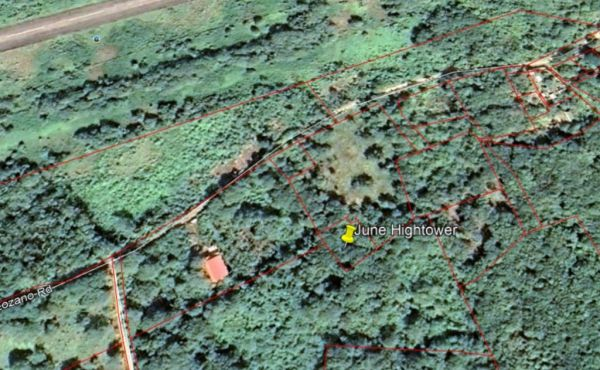 REMU0488 - 0.23 Acres at Swanix Ridge (5)