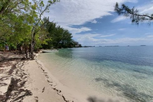 0.39 Acres at Pine Point - Photo 1