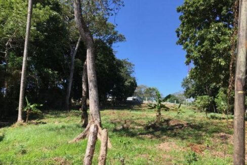 1.234 Acre 5 Lot subdivision at Jerico (Photo 1)