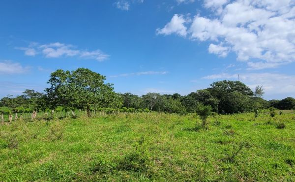 0.09 Acres at Western Path (Lot B-4) Photo 4